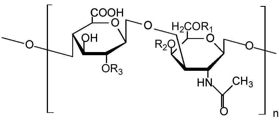 vansiton kondroitin és glükózamin