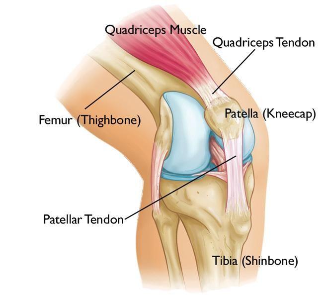 térdfájdalom ligamentum károsodása)