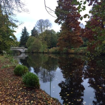 térdkárosodás ősszel