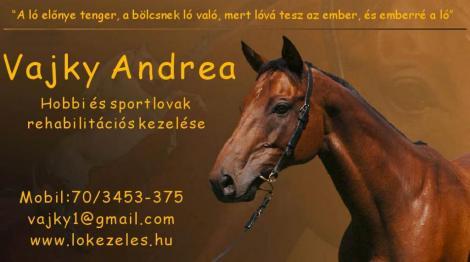 lovak ízületi fájdalmainak kezelésére mandula ízületi fájdalom eltávolítása