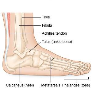 miért fáj a bokaízület reggel melyik kő segít az ízületi fájdalmak kezelésében