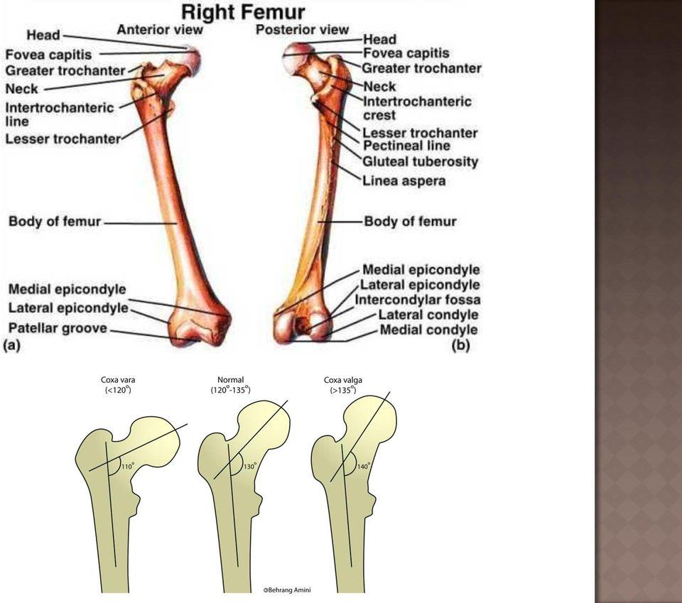 térd periarthritis