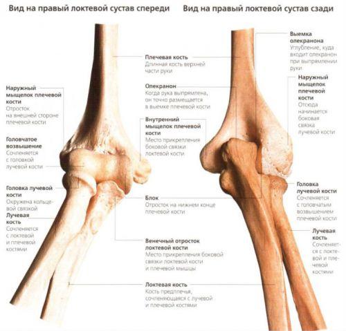 a könyökízület blokkja fájdalom akkor fordul elő, ha a térd meghajlik