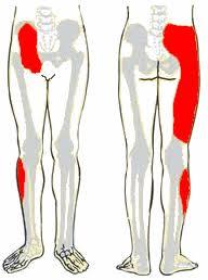 lapos láb fájdalom a csípőízületben hatékony gyógymódok térdízületi fájdalmakhoz