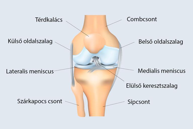 térdízületi ízületi tünetek és kezelés tünetei)