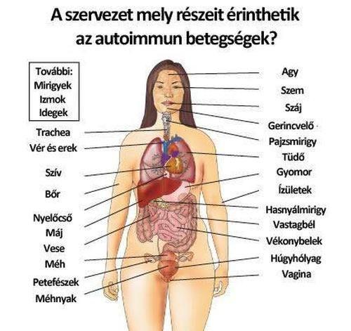 ízületi betegségek és máj