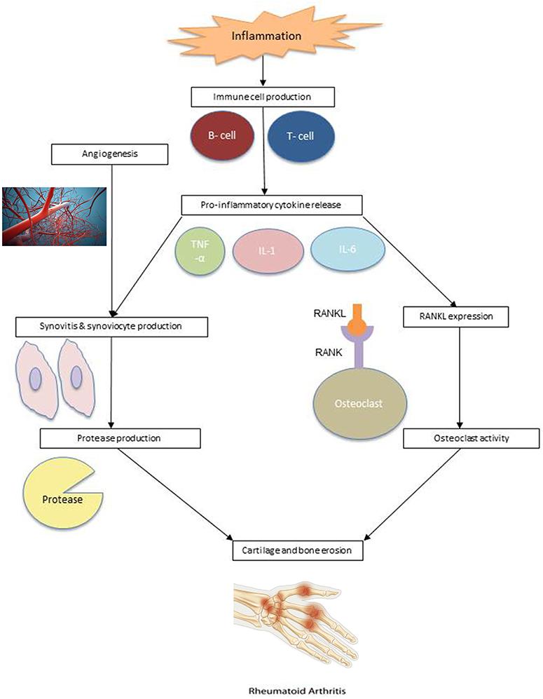 Klinikai vizsgálat a Rheumatoid Arthritis - Klinikai vizsgálatok nyilvántartása - ICH GCP