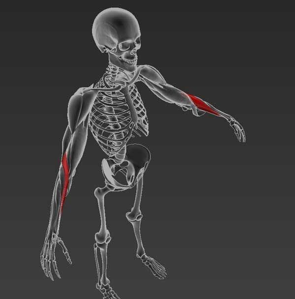 Csont és duzzanat a láb boka és boka közelében a csont közelében