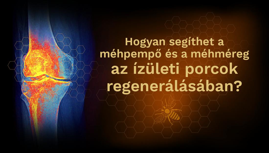 méhméreg és ízületi fájdalom)