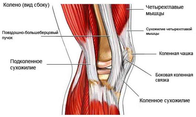 a térdízület kezelésének feszített ligamentuma részleges törése