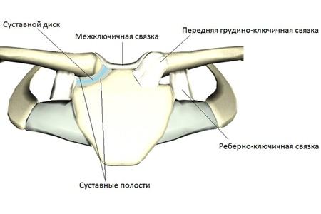 a kar ízületének kötéseinek károsodása)