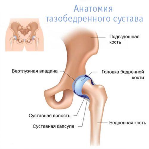 időskorúak csípőjének coxarthrosis-betegsége