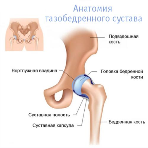 fájdalom a bal csípőízületben és az ágyékban)