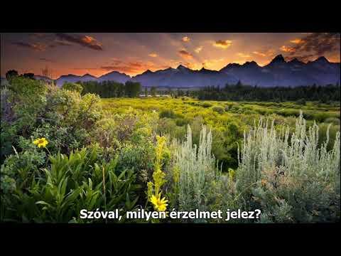 a tó gyógyítja az ízületeket)
