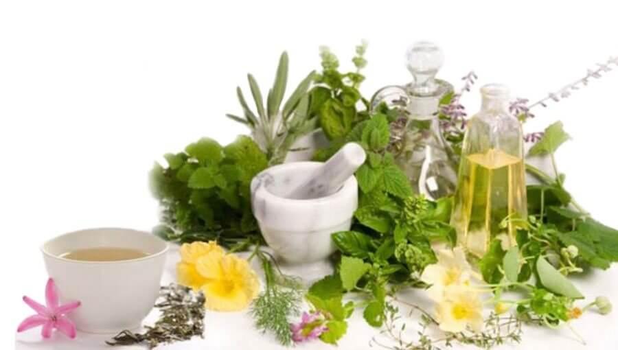 gyógynövények artrózis kezelésére
