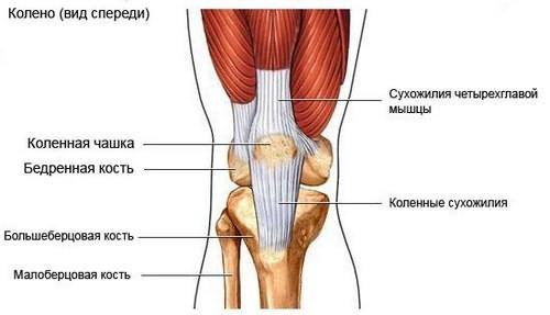 amit nem lehet enni a vállízület artrózisával)