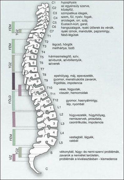 kenőcsök a nyaki osteochondrozishoz