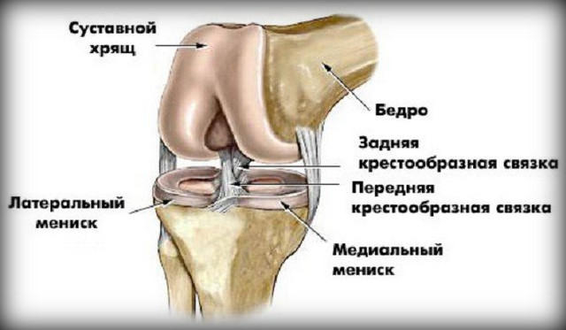 hosszú séta után a térdízület fáj)