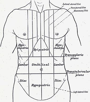 Ezt a betegséget jelezheti a jobboldali alhasi fájdalom - EgészségKalauz