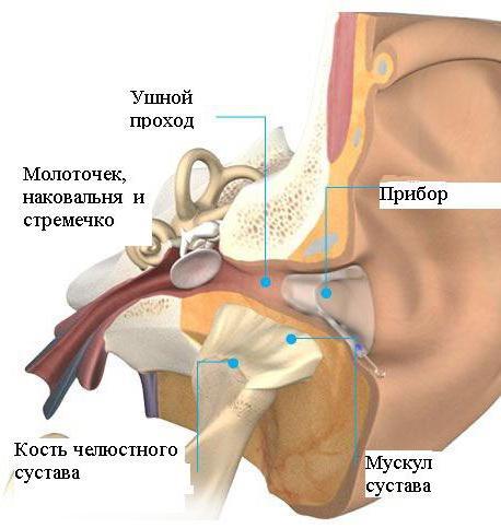 szimmetrikus ízületi fájdalom éhezési ízületi kezelés