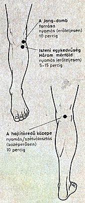 ízületi meditáció)