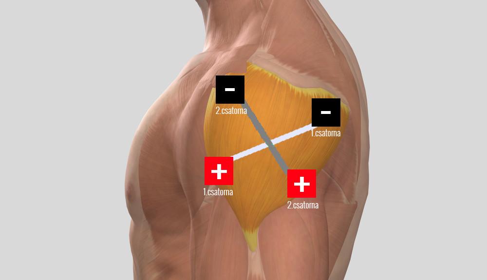 Kézi ízületi betegségek, fájdalomkezelés - Csukló July - Kalanchoe ízületek kezelése