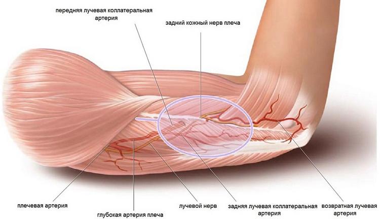 Arc ideg: gyulladás (neuritis), tünetek, otthoni kezelés - Könyök