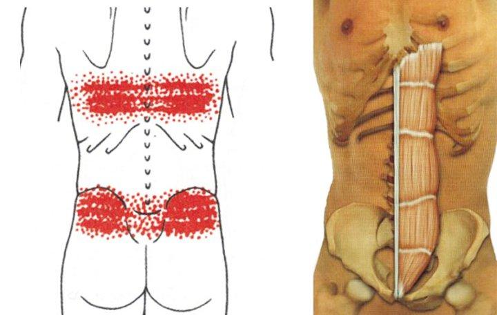 izom-csontrendszeri betegségek és kötőszövetek okai