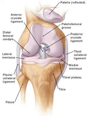 ízületi gyulladás a térdízület 3 fokát okozza ízületi és csontfájdalom szülés után
